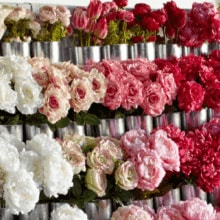 40% off Entire Stock Floral Stems