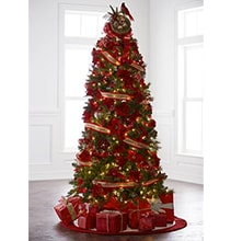 Entire selection of 6ft & Taller Trees on sale plus Free Shipping! Shop early for the best selection!