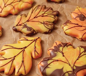 Fall Baking & Party