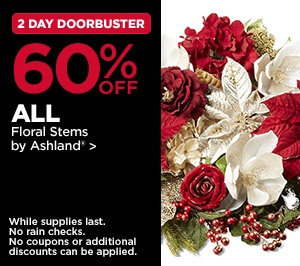 2 Day DoorBusters 60% All Floral Stems by Ashland