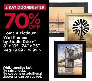 2 Day DoorBusters 70% OFF Home & Platinum Wall Frames by Studio Décor