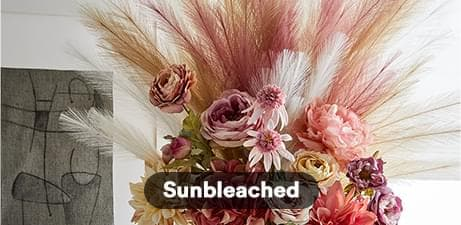 Sunbleached