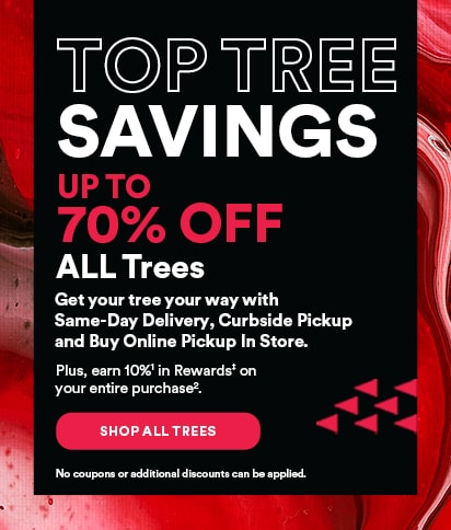 TOP TREE SAVINGS. 70% OFF ALL Trees.