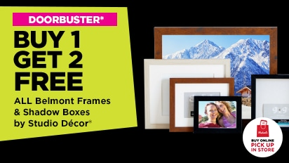 DOORBUSTER! Buy One Get Two Free All Belmont Frames &  Shadow Boxes by Studio Decor