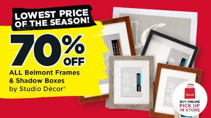 70% OFF Belmont Frames & Shadow Boxes by Studio Décor