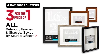 3 for the Price of 1 All Belmont Frames & Shadow Boxes by Studio Décor