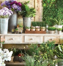 Save 40% on Spring Floral & Greenhouse Market by Ashland®