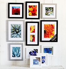 BOGO Free All Gallery Wall, Mirror Gallery & Float Frames