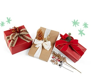 'Gift Wrap' from the web at 'http://www.michaels.com/static/on/demandware.static/-/Sites-MichaelsUS-Library/default/dwb78af474/images/categories/CT-SE-GS-110117-09.jpg'