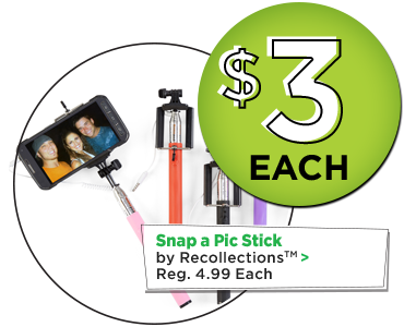 Snap a Pic Stick by Recollections - $3 Each