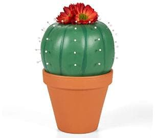 Potted Cactus Pumpkin