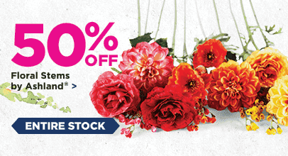 50% Off Entire Stock Floral Stems by Ashland
