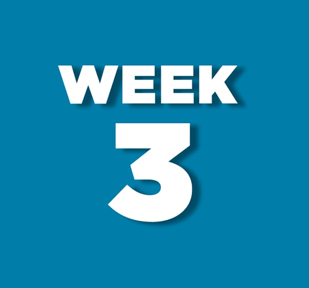 Week 3 theme to be announced