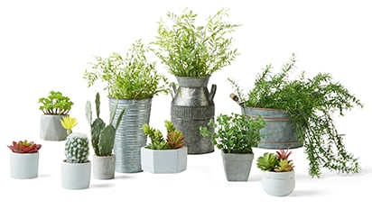DoorBuster - 50% OFF ALL Garden Collection Greenery & Containers